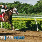 ¿Por que todos los agentes deben ofrecer apuestas en caballos?